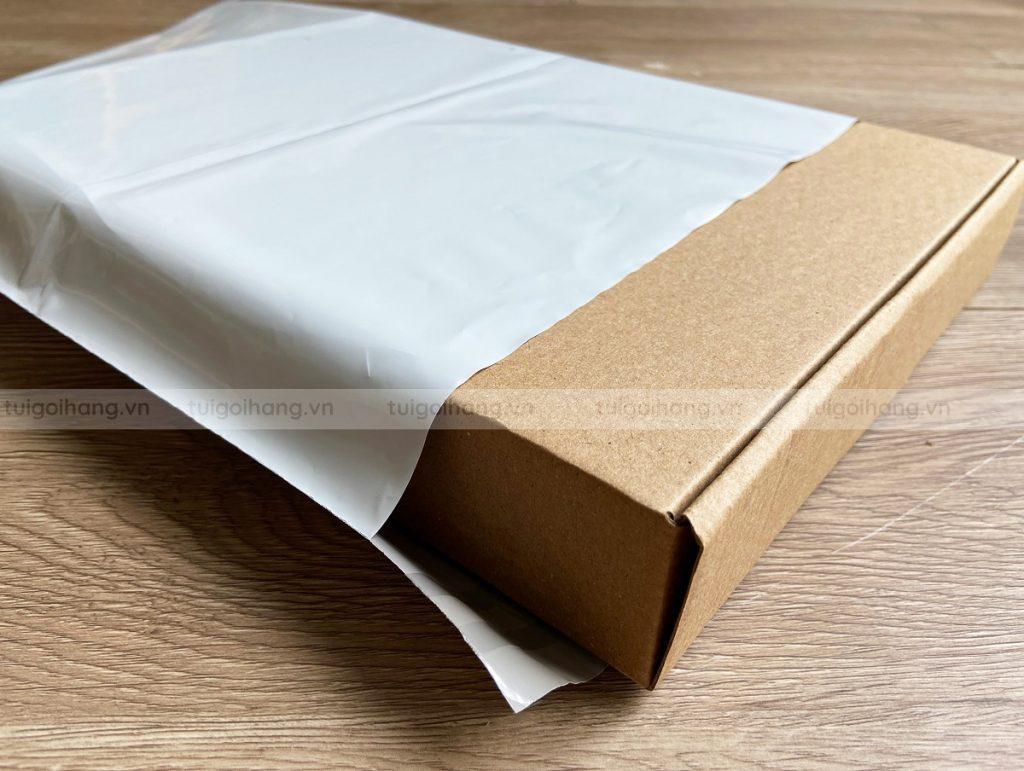 túi gói hàng niêm phong đóng hộp carton